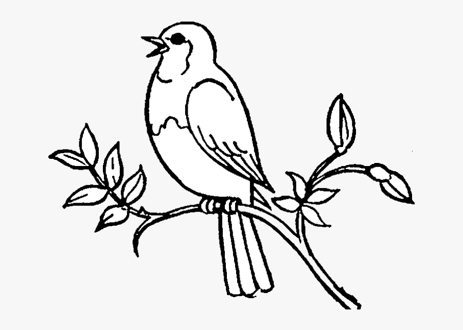 Bird Birds Clipart Black And White Free Best Transparent.