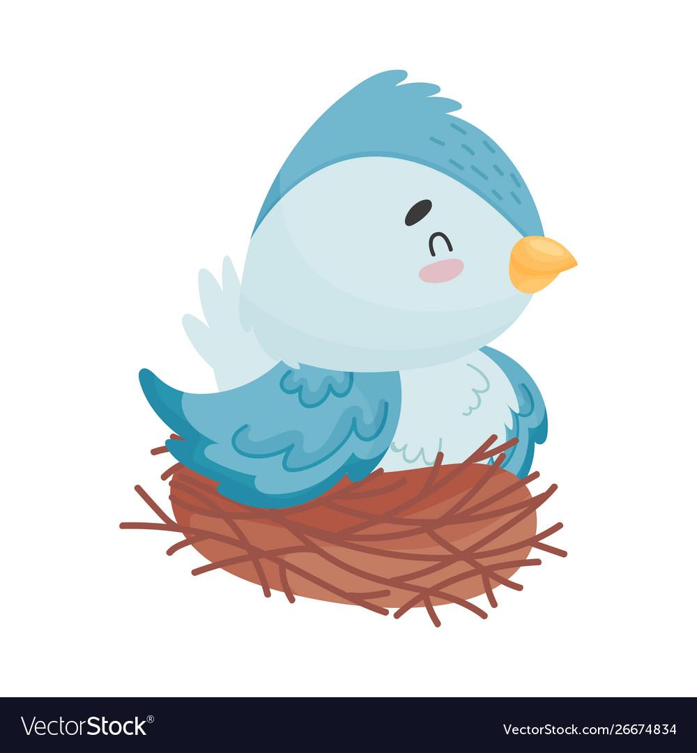Cartoon bird sitting nest on.