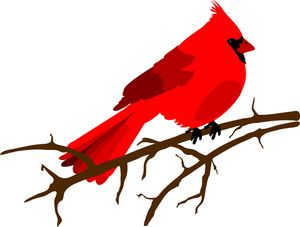 Clip art illustration of a red Cardinal bird sitting on a branch.
