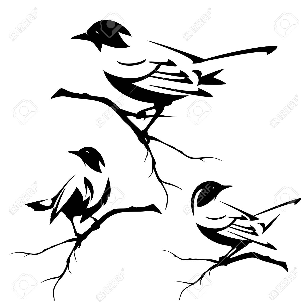 small birds sitting on tree branches.
