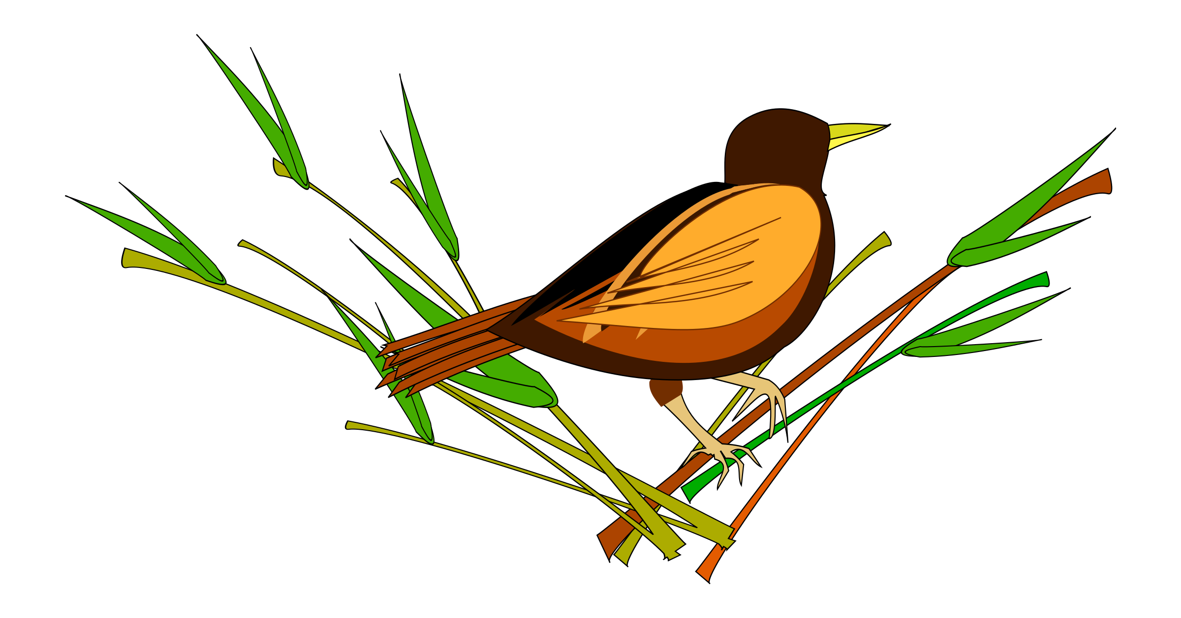 Sparrow sitting on Branch Vector Clipart image.