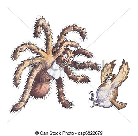 Stock Illustration of Tarantula.