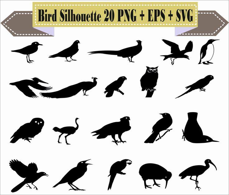 1000+ ideas about Pigeon Supplies on Pinterest.