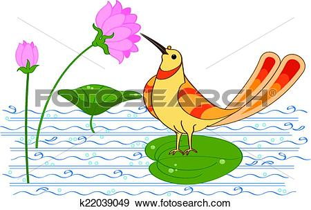 Clip Art of Bird Drinking Nectar (Sugar Water) From Lotus Flower.