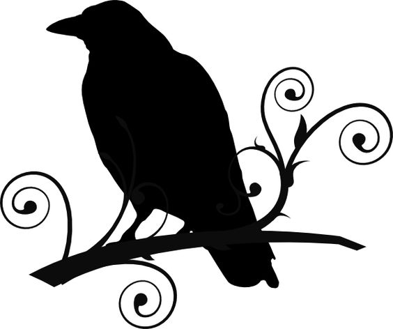 Raven+Pictures+Bird+Silhouette.