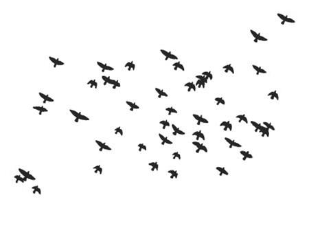 Flock of birds clipart free.