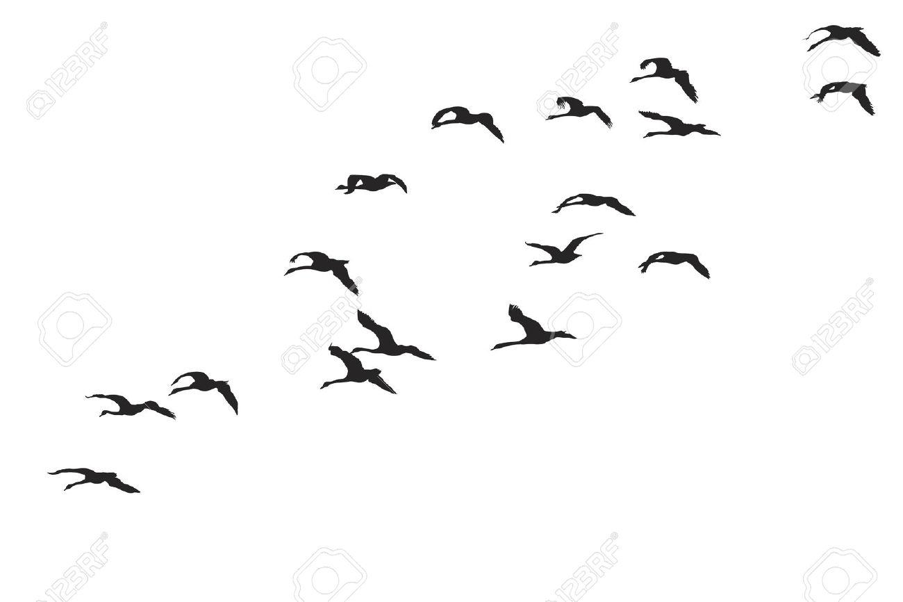 Cutout bird silhouette flying clipart.