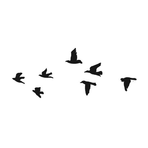 1000+ images about Bird Templates on Pinterest.