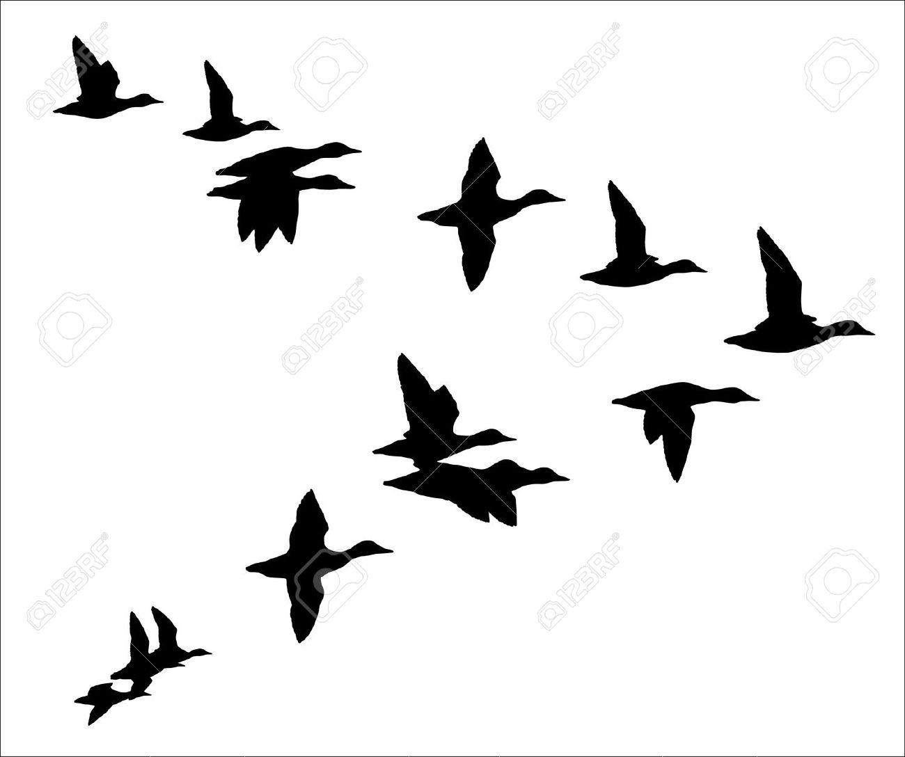 Flock of geese clipart.