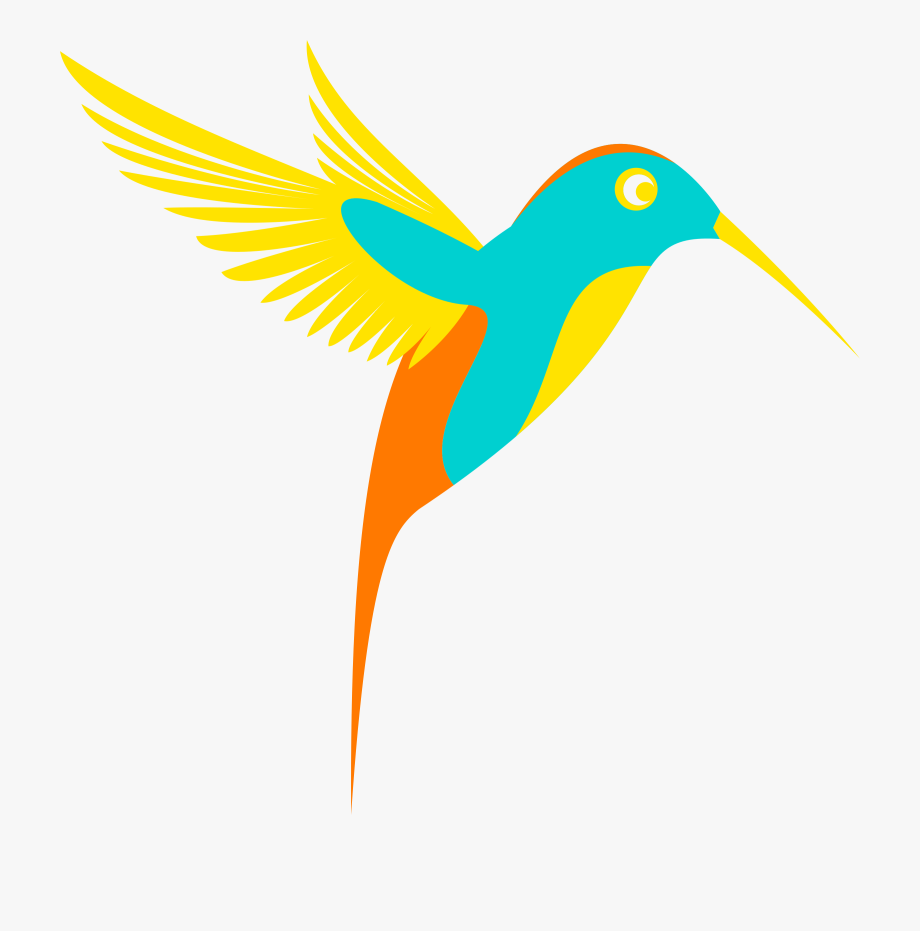 Colibri Colorful Bird Vector Clipart.
