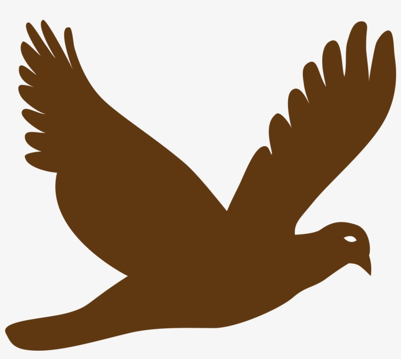 Bird Vector Png.