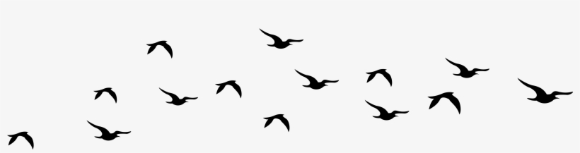 Bird Silhouette Cliparts Free Download Clip Art Free.