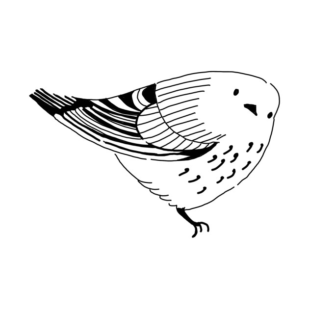 Bird Watching Funny Novelty Cartoon Hand Drawing.