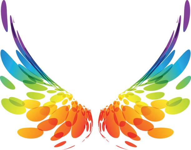 Best Bird Wings Illustrations, Royalty.
