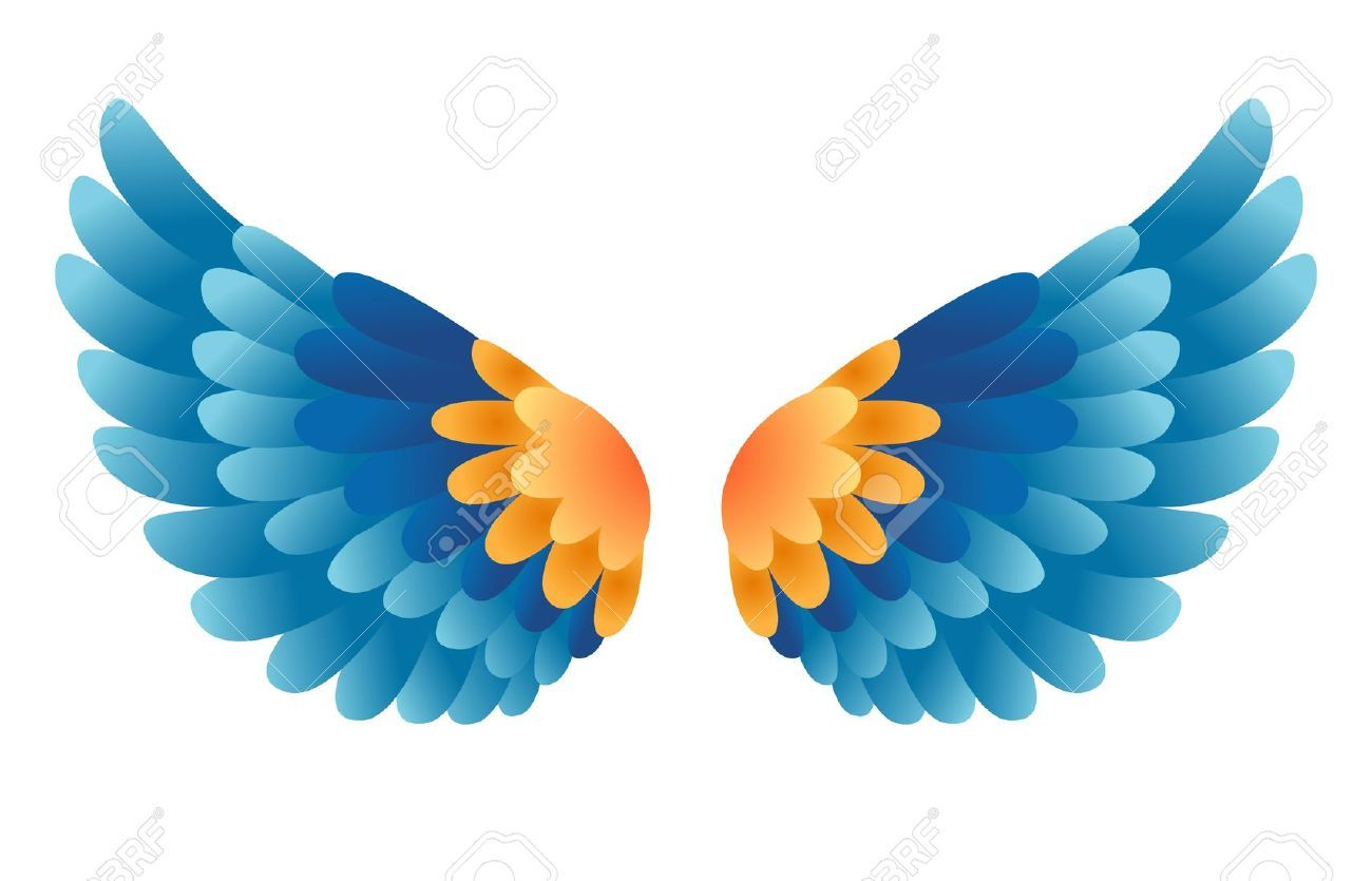 Bird Wings Stock Photos Images. Royalty Free Bird Wings Images And.