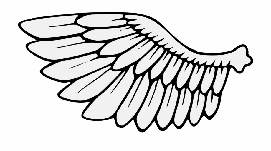 Wing Svg Traceable.
