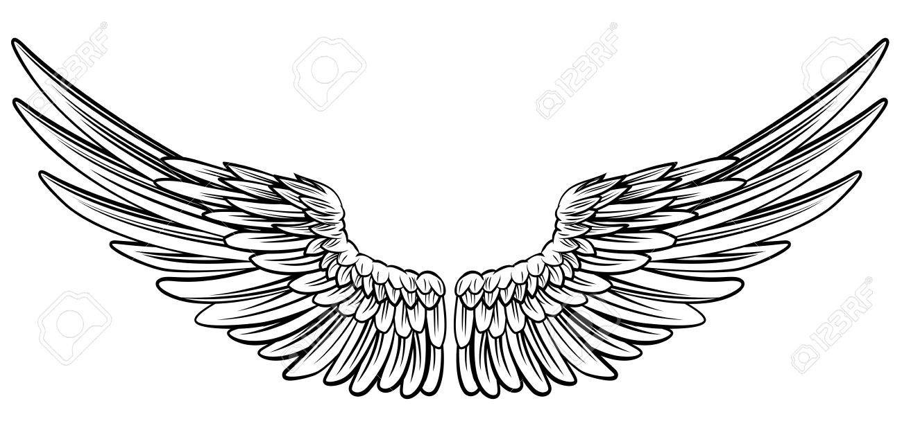 At Clipart Bird Wings 68439120 Pair Of Spread Out Eagle Or Angel.