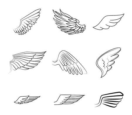 126,681 Bird Wing Stock Vector Illustration And Royalty Free Bird.
