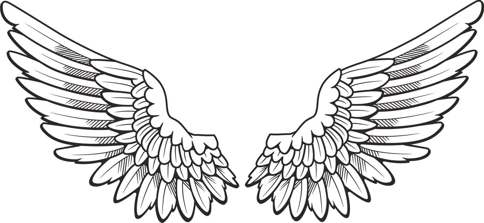 bird wings clipart.