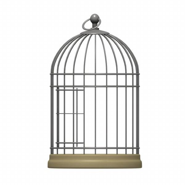 Bird Cage Transparent Clipart.
