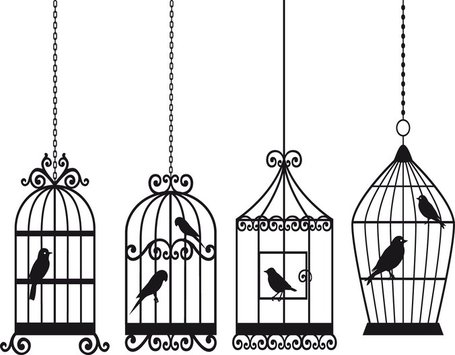 Bird And Birdcage Clipart Picture Free Download.
