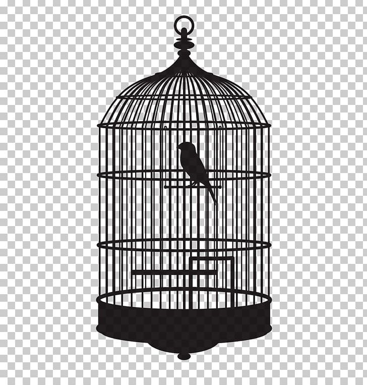 Birdcage PNG, Clipart, Animals, Bird, Birdcage, Black And.