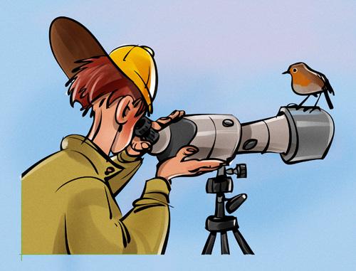 Birding clipart #16