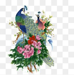 Birds And Flowers in 2019.