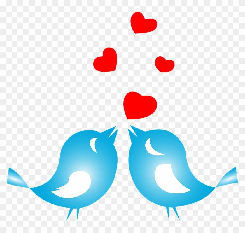 Love Birds Png.