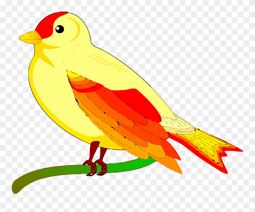Bird Clipart Free Vector For Free Download About Clipart.