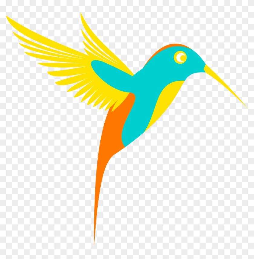 Clipart Colibri Birds.