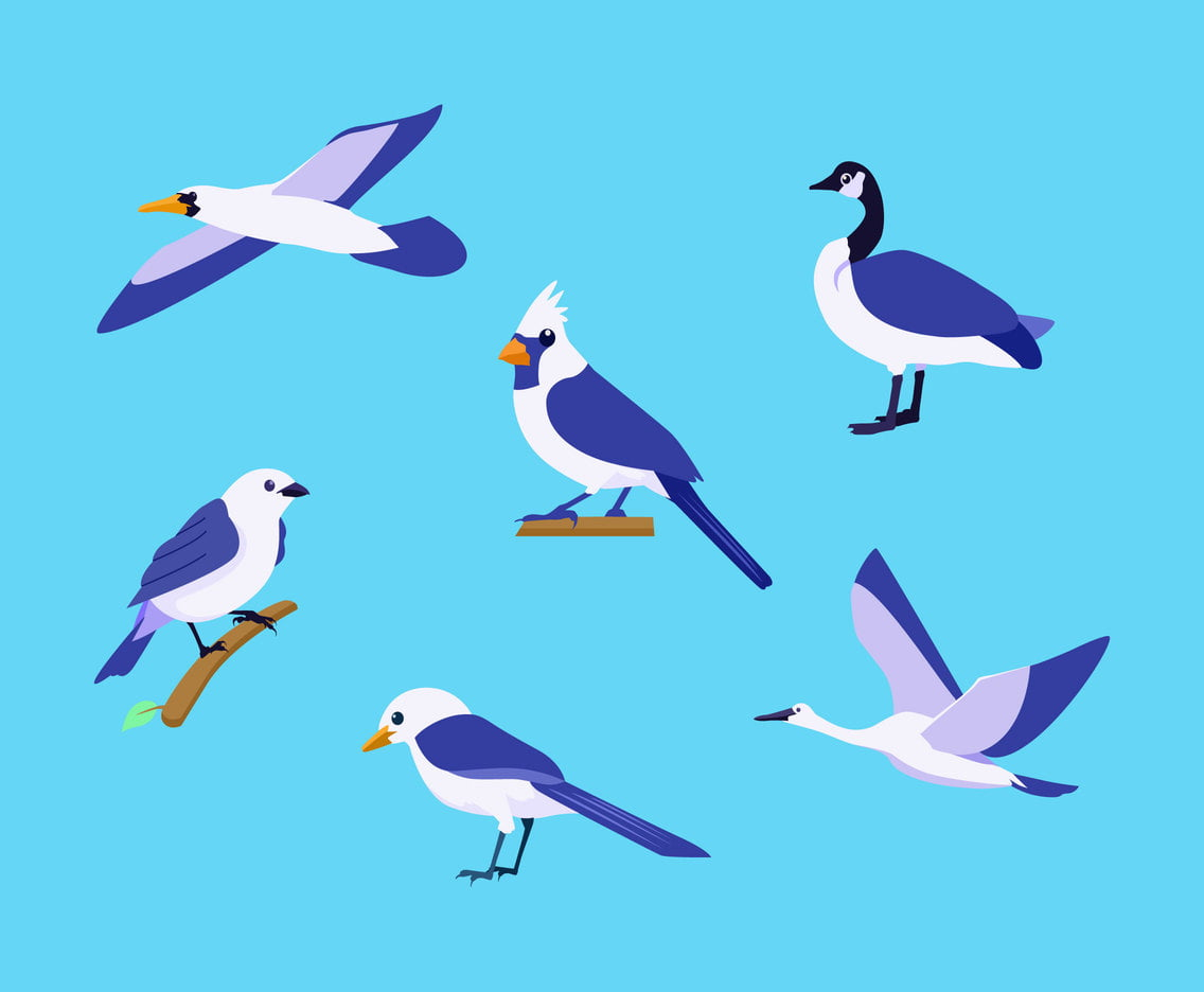 Various Birds Clipart Vector ai, svg file.