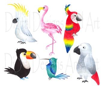 Watercolor birds clipart, Tropical bird clipart, Watercolor bird.