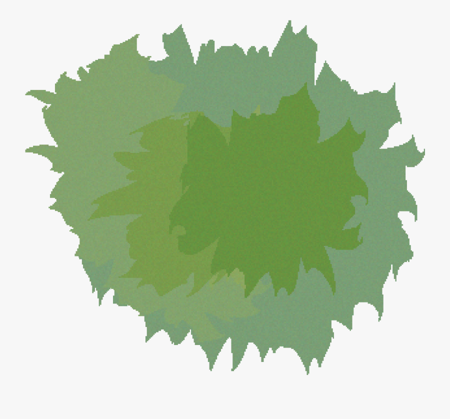 Tree Birds Eye View Png , Free Transparent Clipart.