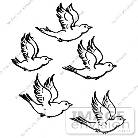 Birds Flying Clipart Black And White.