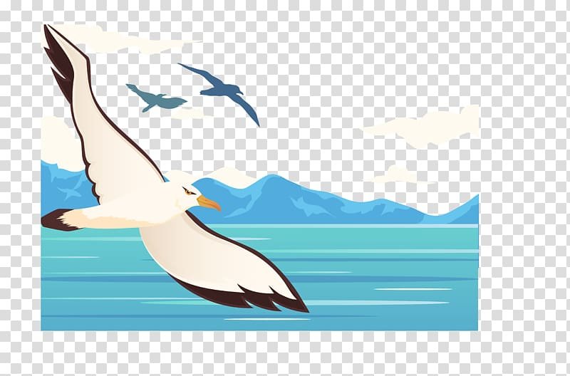 Flight Bird Sky Wing , The flying crane transparent background PNG.