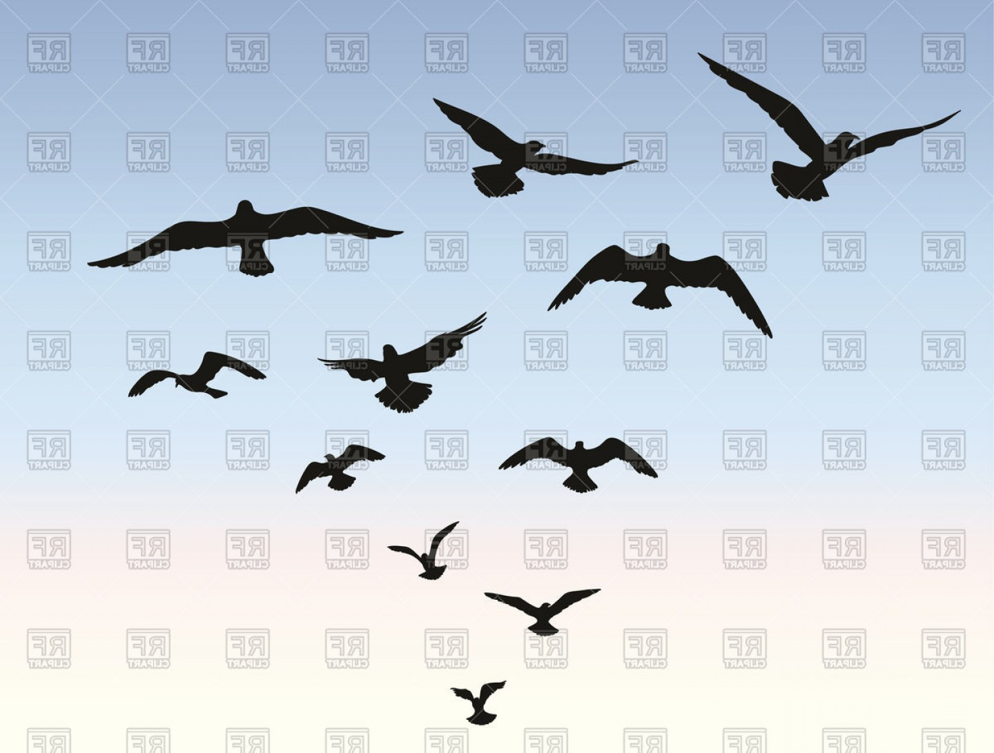 Bird Flying Silhouette Over Blue Sky Background Animal Wildlife.