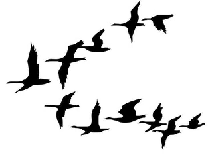 Birds Flying South Clipart.