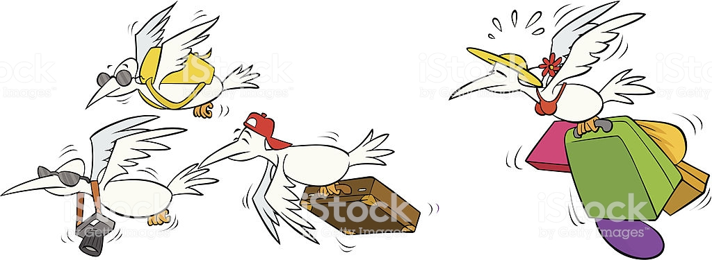 Migrating Birds Flying To South Stock Illustration.