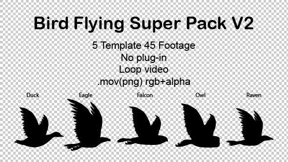 Bird Flying Super Pack V2 by light.