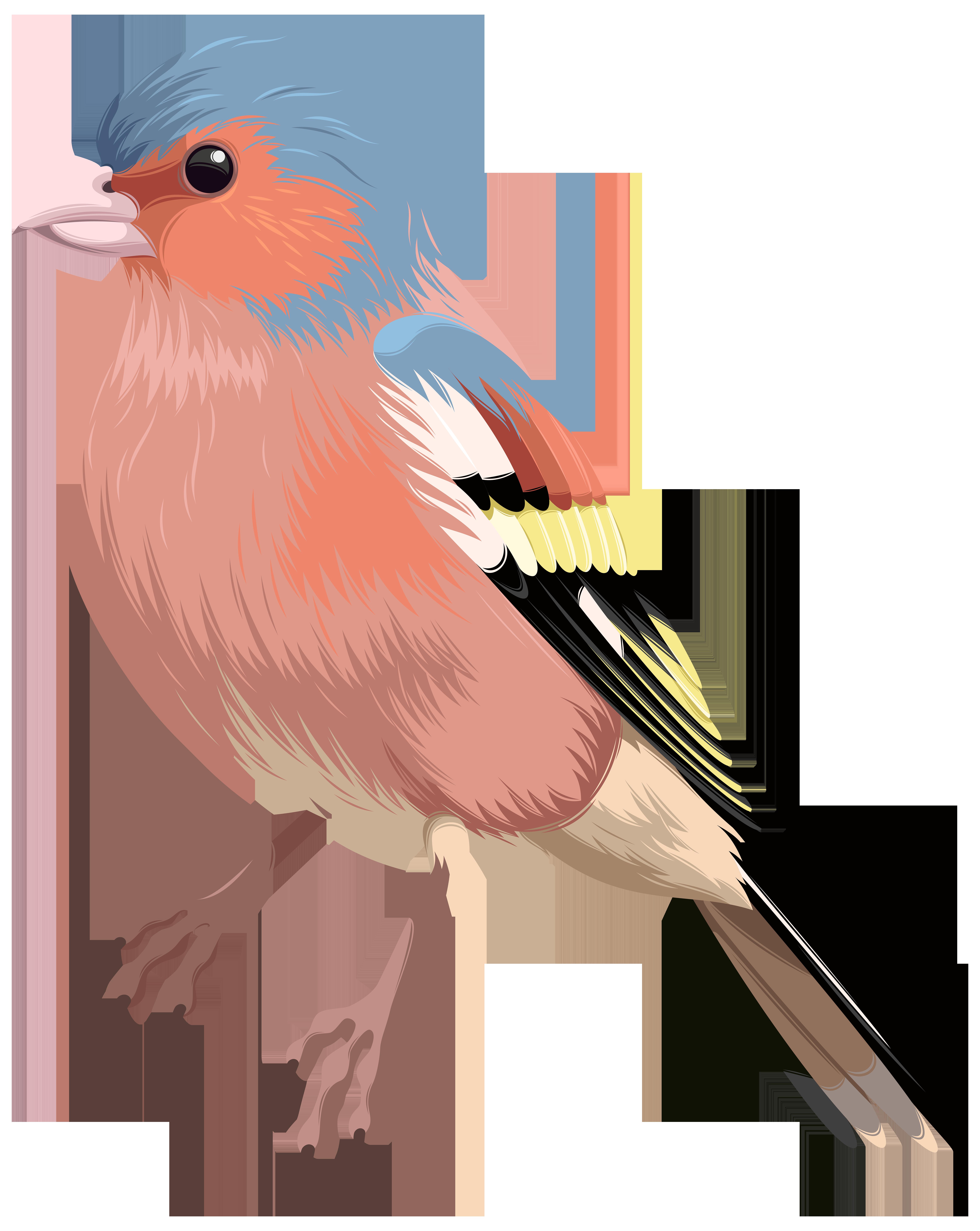Bird PNG Clip Art.