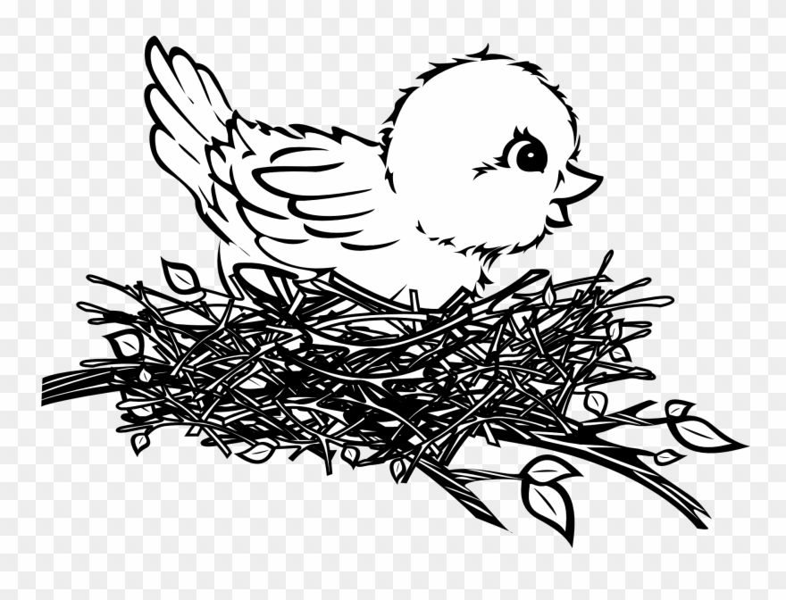 Bird In A Nest Art.