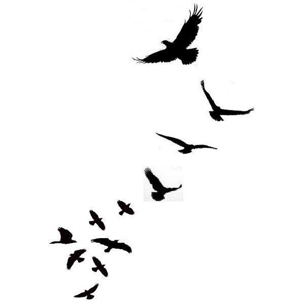 1000+ ideas about Bird Silhouette on Pinterest.