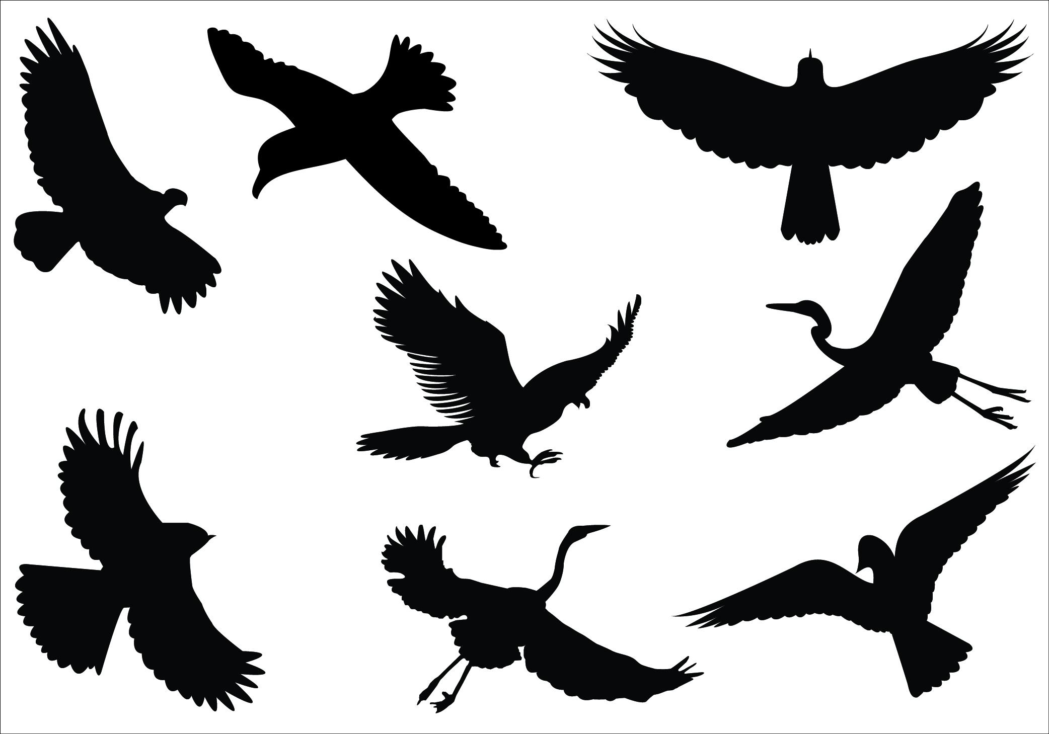 Birds in flight clipart.