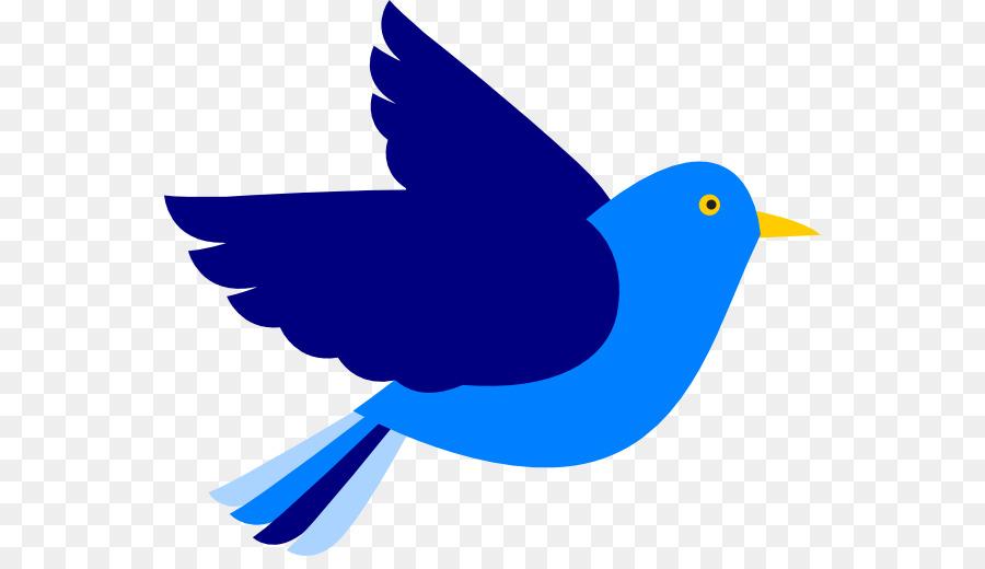 Bird Wing.