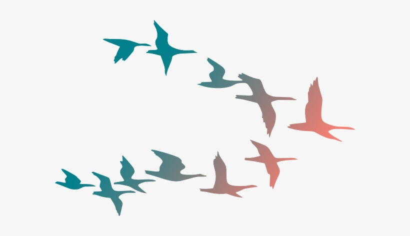 Png Transparent Download Bird Flying Clipart.