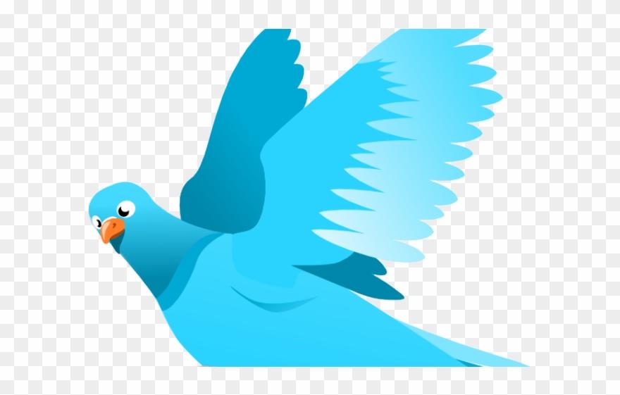 Sky Clipart Bird.