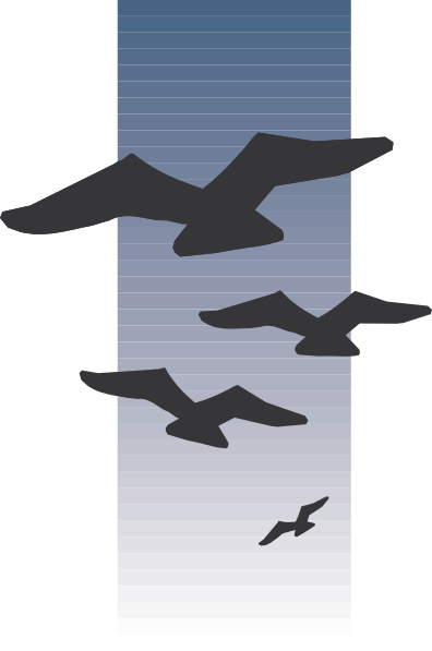 Birds Flying In The Distance Clip Art.