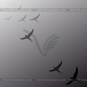 Birds flying away into distance.