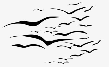 Flock Of Birds PNG Images, Transparent Flock Of Birds Image.